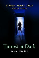 c c hunter's turned at dark short story